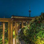 roof garden-روف گاردن
